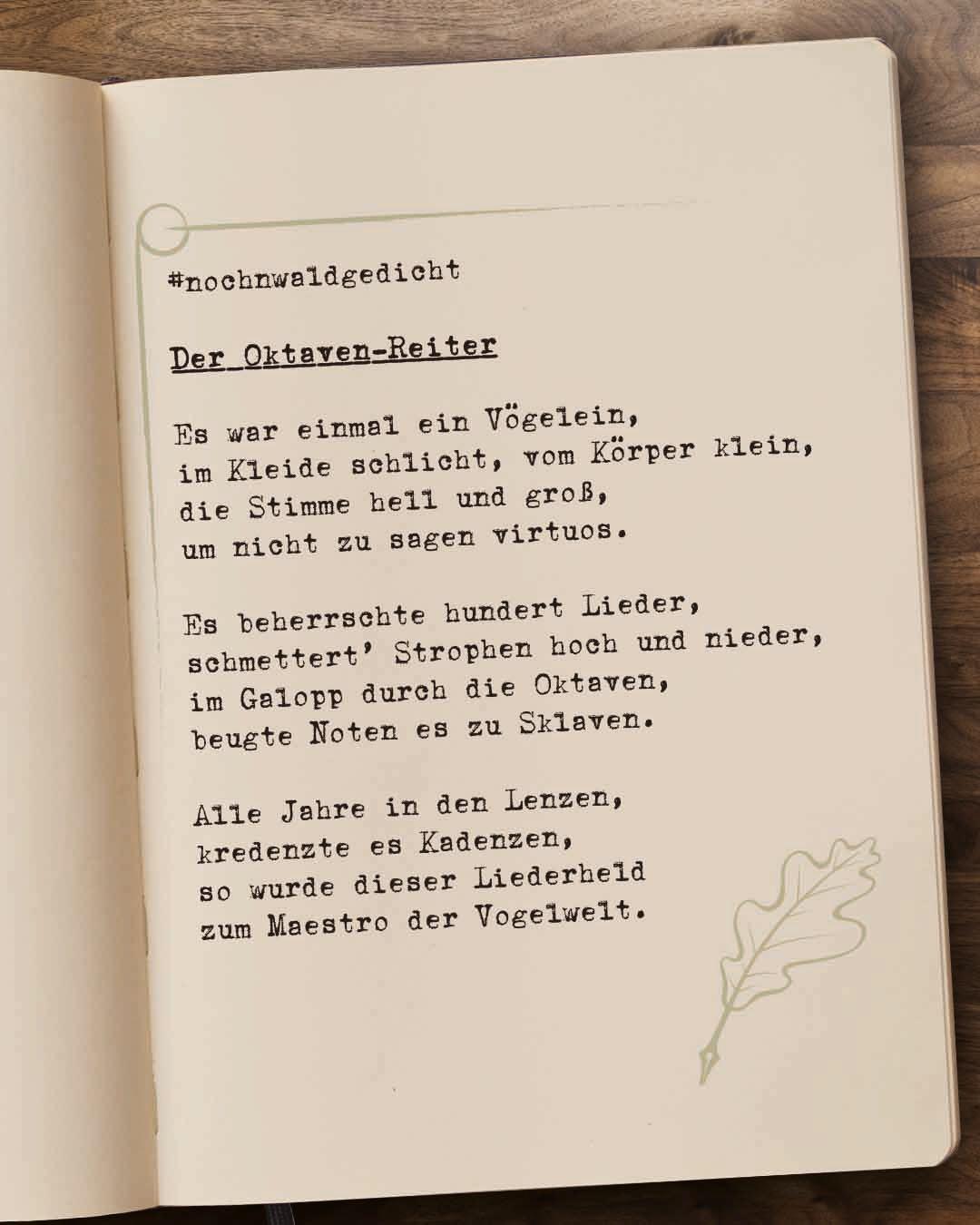 Der-Oktaven-Reiter-Teil-1-1