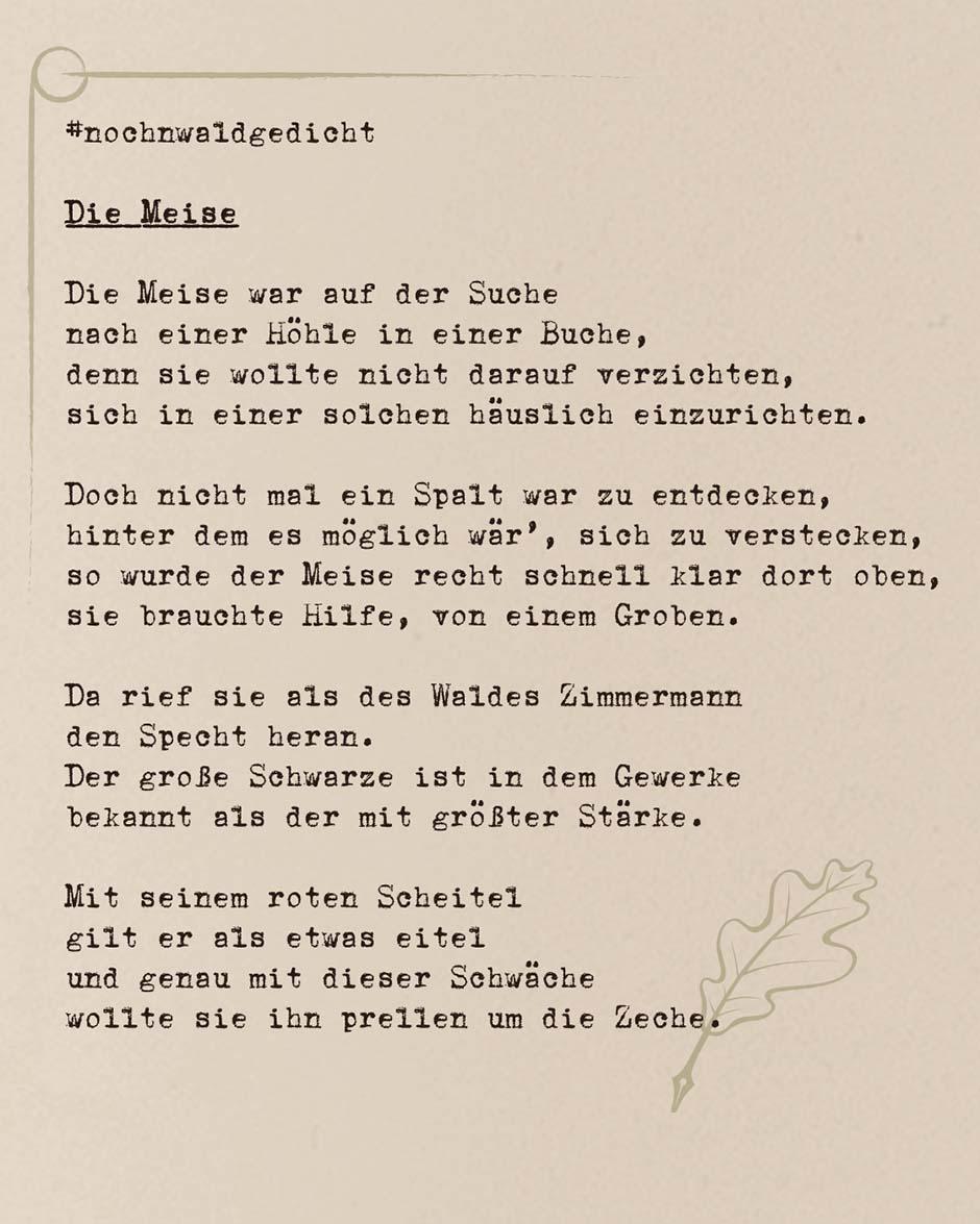 Die-Meise_Teil-1