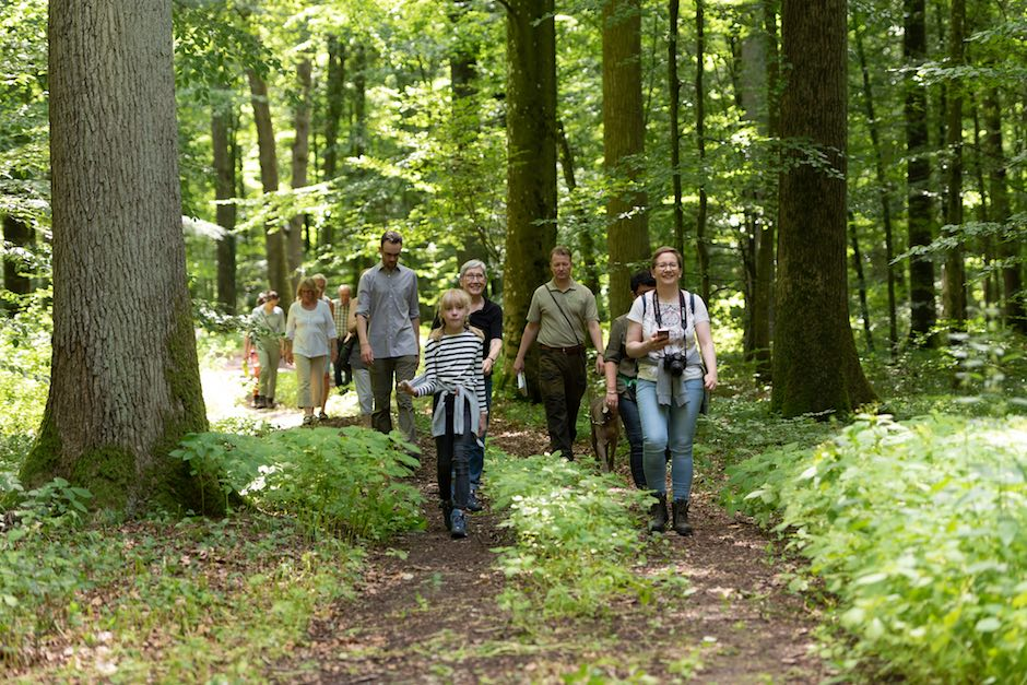 Waldpoet-waldspaziergang-Lesung