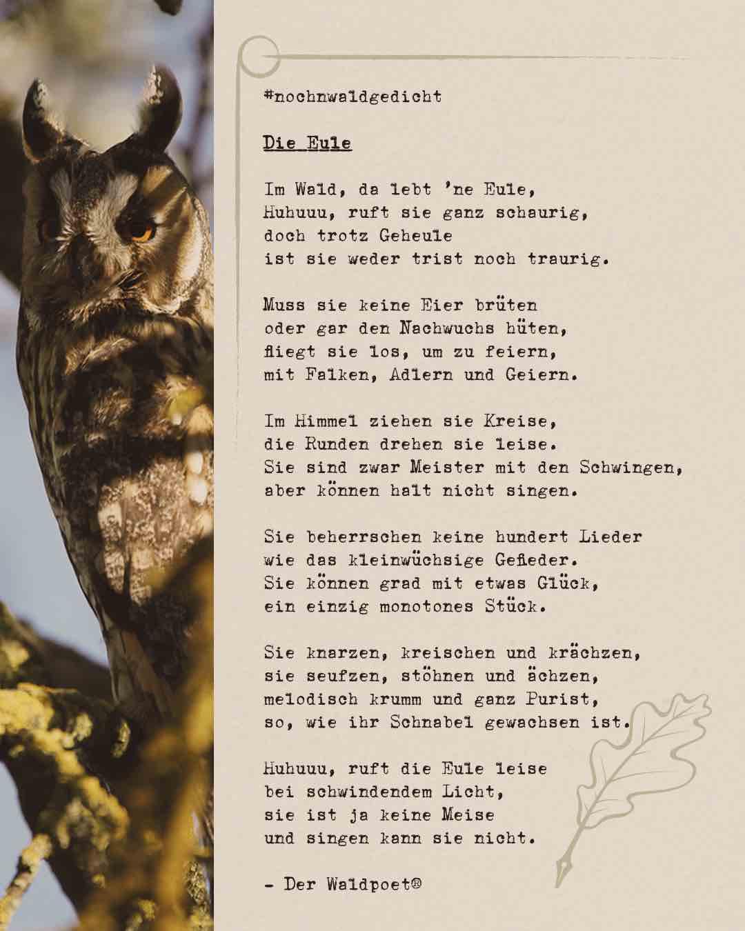 Die-Eule